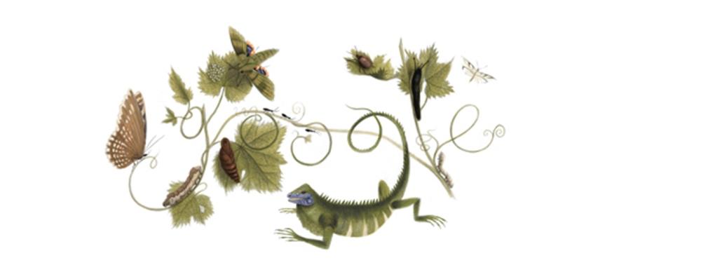 A ilustração em homenagem a Maria Sibylla, no Google